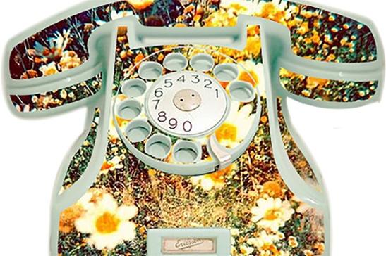 telefone com flores